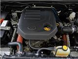 雄狮F22 2015款 柴油版 1.9T 两驱豪华型图片